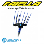 Campagnola Holly + Asta R6 carbonio